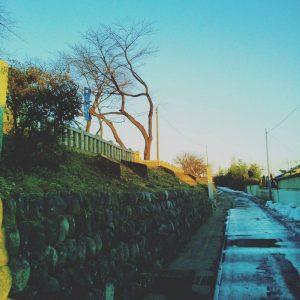 photos_ 2