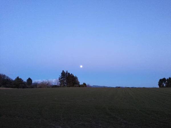 元旦は空と月